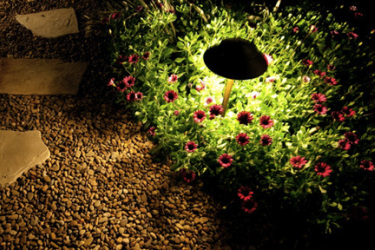 Garden Lighting and Irrigations, Outdoor Light, Yard